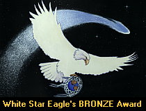 White Star Eagle Bronze Award